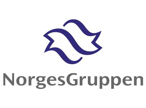 norgesgruppen_logo_01